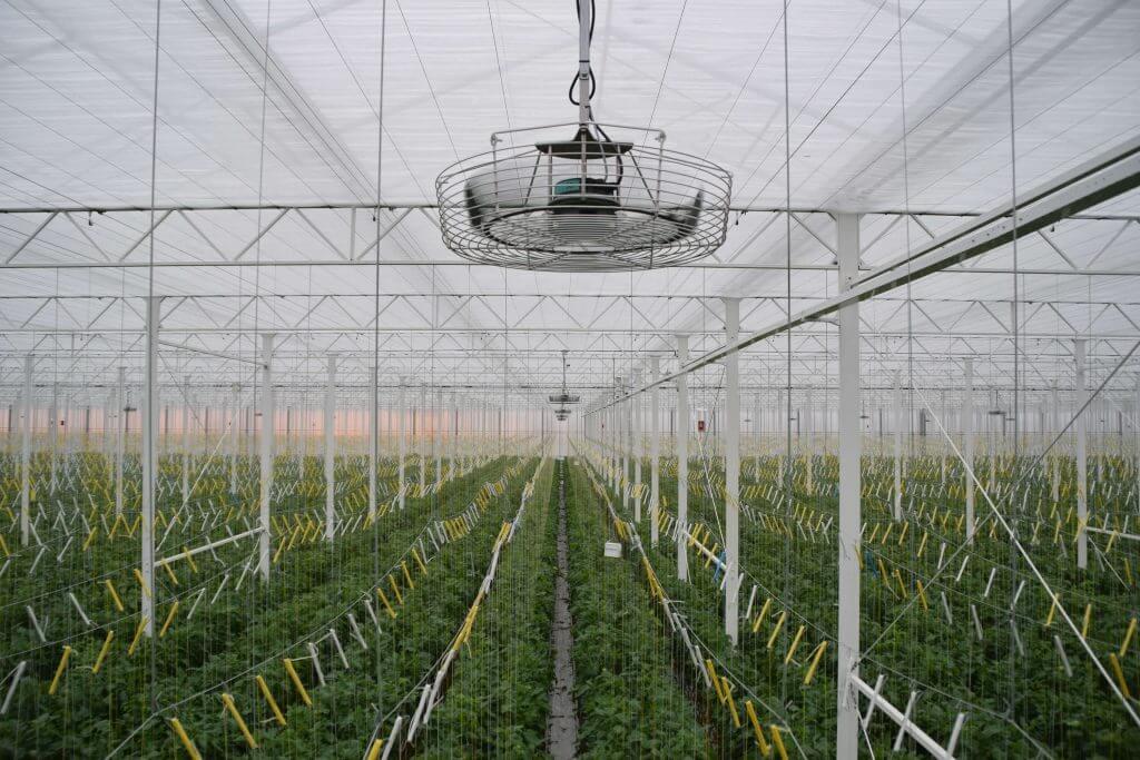 Duurzaam telen verticale ventilatie